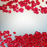 Red rose petals. EPS 10 Stock Image