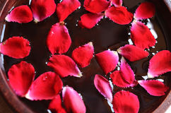 Red rose petals floating in water in wooden bowl Royalty Free Stock Photos