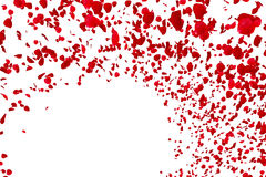 Red rose petals flying with vortex on white background, love and valentine day Royalty Free Stock Image