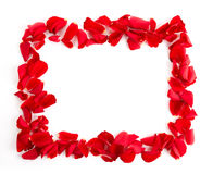 Red rose petals frame Royalty Free Stock Photo