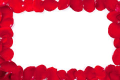 Red rose petals frame Royalty Free Stock Images