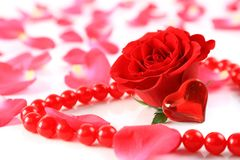 Red rose and petals with heart Stock Photo
