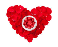 Red rose petals heart and gift box Stock Photography