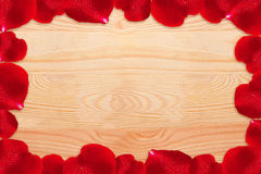 Red rose petals. royalty free stock image