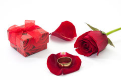 Red rose petals with red gift box and golden ring Royalty Free Stock Photo