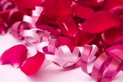 Red rose petals with ribbons Stock Photography