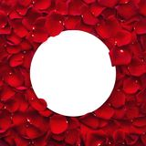 Red rose petals and round paper note. Red rose petals and round blank paper note. Valentines day concept Royalty Free Stock Photo
