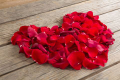 Red rose petals scattered on wooden background. Close-up of red rose petals scattered on wooden background Stock Images
