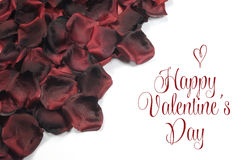 Red rose petals on white background with Happy Valentines Day greeting Royalty Free Stock Image