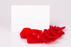 Red rose petals and white sheet of paper Royalty Free Stock Photo