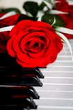 Red rose on a piano Royalty Free Stock Photography