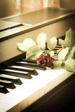 Red rose on piano. Royalty Free Stock Photos