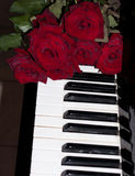 Red rose on piano keyboard Royalty Free Stock Photos