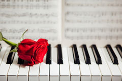 Red rose on piano keys and music book. Closeup view Royalty Free Stock Photos