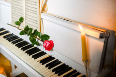 Red rose on piano keys and music book Stock Photography