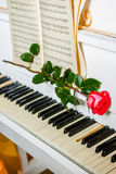 Red rose on piano keys and music book Royalty Free Stock Photography