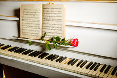 Red rose on piano keys and music book Royalty Free Stock Images