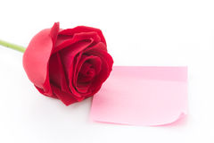Red rose with pink paper note Royalty Free Stock Photos