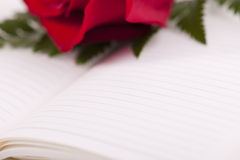 Red rose on planner. Selective focus, copy-space for your own text Royalty Free Stock Photos