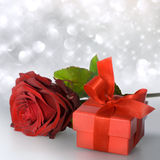 Red rose with red gift package Stock Image