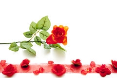 Red rose with red loop Royalty Free Stock Image