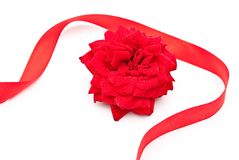 Red rose with red ribbon Royalty Free Stock Photography