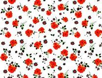 Red rose. On white background. Illustration royalty free illustration