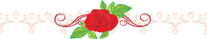 Red rose and ribbon with floral ornament Stock Images