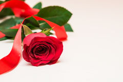Red rose with ribbon on a light wooden background. Women' s day, Royalty Free Stock Image