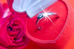 Red rose with a ring Stock Images
