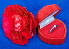 Red rose with a ring Royalty Free Stock Image