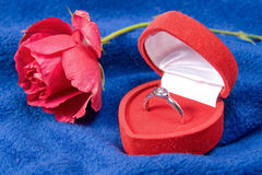 Red rose with a ring Royalty Free Stock Photography