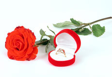 Red rose and ring Stock Photo