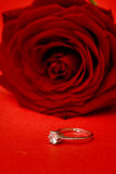 Red Rose and ring Royalty Free Stock Photography