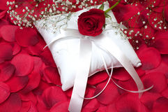Red Rose on Ring Bearer's Pillow Stock Images