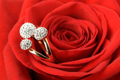 Red rose with a ring with jewels Royalty Free Stock Photography