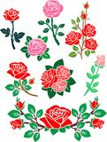 Red Rose. The Red Roses is vector illustration Stock Image