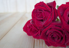 Red rose 77 Royalty Free Stock Photo