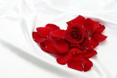 Red rose's heart Stock Photo