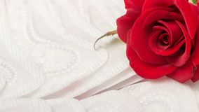 Red rose and sanitary pads. The concept of purity and freshness stock image