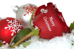 Red Rose that says Merry Christmas on it. Beautiful Red Rose with Merry Christmas written on it isolation on white with ornaments and snow Stock Photos