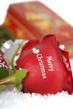 Red Rose that says Merry Christmas on it Stock Photo