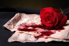 Red rose,score and blood Stock Photos