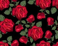 Red rose seamless pattern vector illustration stock images