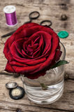 Red rose and sewing accessories and tools Royalty Free Stock Images