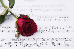 Red rose and sheet music. Royalty Free Stock Photo