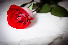 Red rose and a sheet of paper Stock Photography