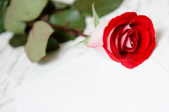 Red rose and a sheet of paper Royalty Free Stock Photography