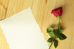 Red rose with a sheet Royalty Free Stock Photography