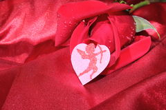 Red Rose. A red rose on silky sheets with a sparkling cupid heart stock image